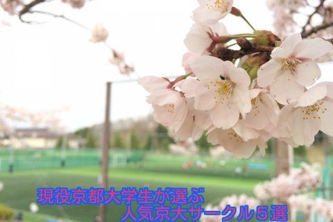 現役京大生が選ぶ京都大学の人気サークル5選